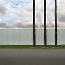 3 poles by Paul Vanzella