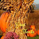 Give Thanks #3 by WildThingPhotos