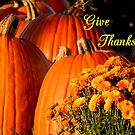 Give Thanks #4 by WildThingPhotos