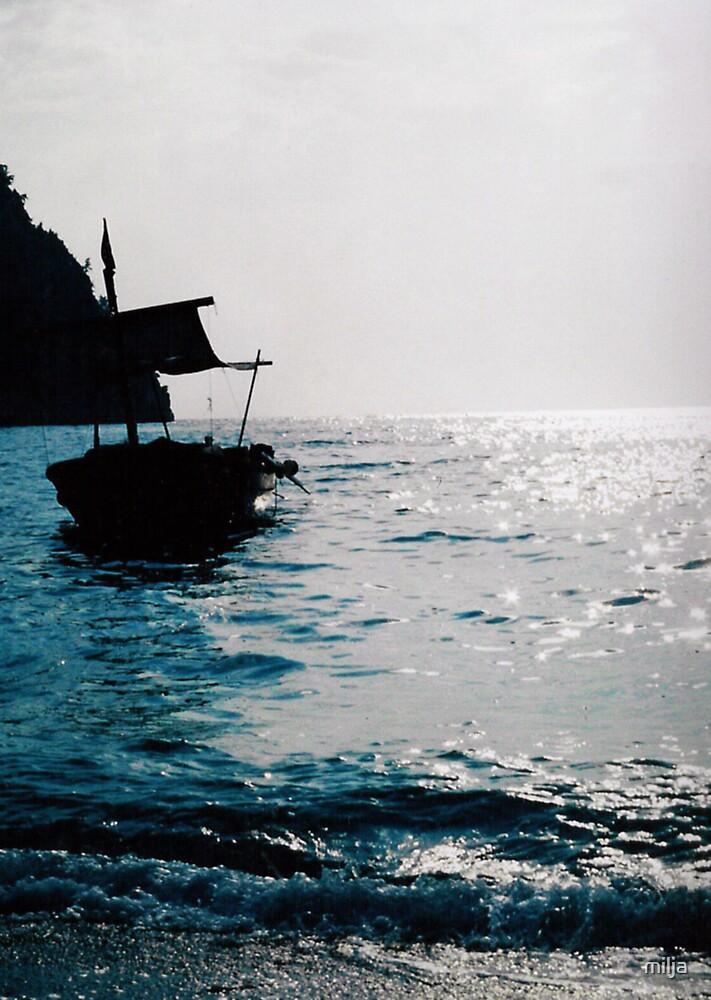 The sleeping Boat by milja