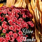 Give Thanks #5 by WildThingPhotos