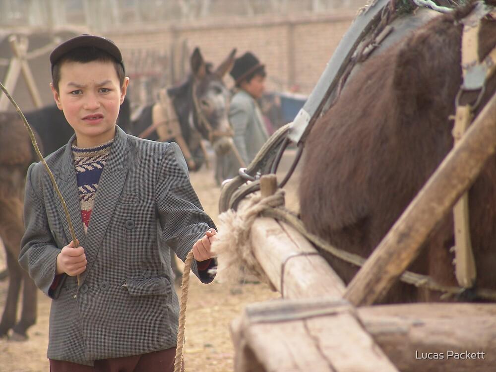 Kashgar, Young Uyghur Boy at Animal Market by Lucas Packett