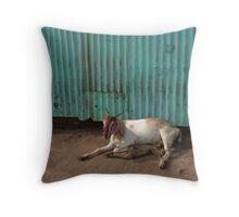 Bombay - Slum Goat Throw Pillow