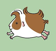 Leaping Guinea-pig ...Brown and White by zoel