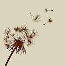 Dandelion by Lara Allport