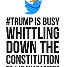 Trump whittling down Constitution to 140 Characters by Lois Keller
