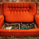 Couch Potato Farm by Rhys Allen