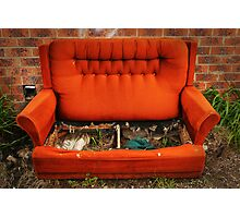 Couch Potato Farm Photographic Print