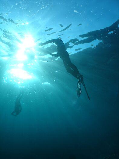 under the heads by aquafarian