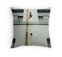 A Brief Rendezvous Throw Pillow