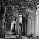 New Orleans - Lafayette Cemetery by ACImaging