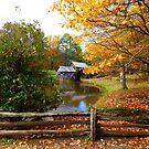 Mabry Mill, VA by SHickman