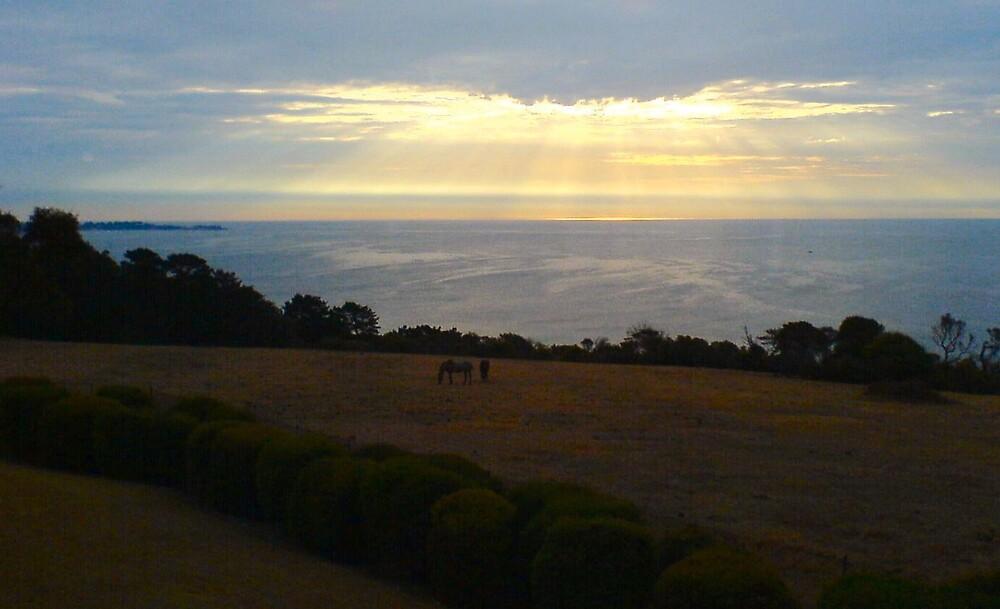 Sunset from Mornington Peninsula by Ameel Khan