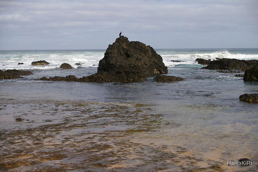 Water Rock by HaRaKiRi