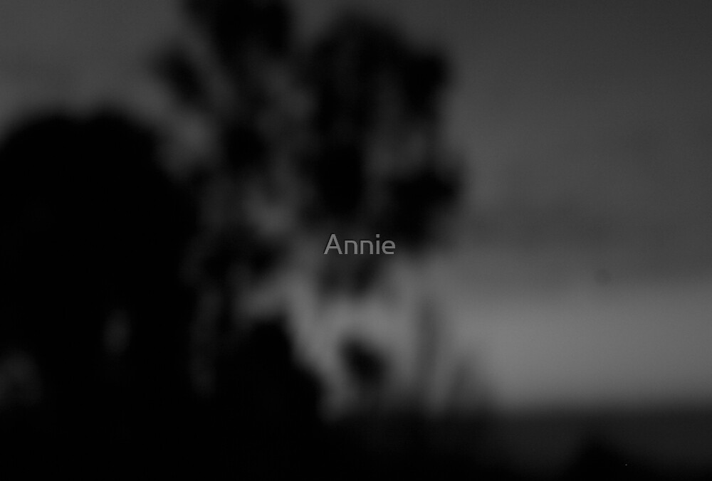 the struggle by Annie