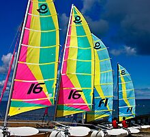 Bright Sails by cclaude