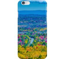 View from Court House Hill iPhone Case/Skin