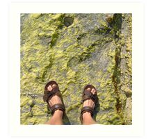 beach rock moss feet Art Print