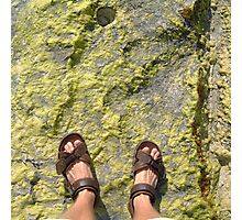 beach rock moss feet Photographic Print