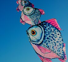 flying fish by Sarah Wheaton