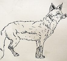 What Did The Fox Say? by Kathrynshaw
