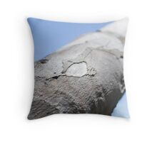 blue sky 24 Throw Pillow