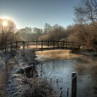 Bridge on the River Itchen by NeilAlderney
