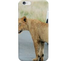 AND THEN ALL WINDOWS WERE CLOSED - THE LION – Panthera leo iPhone Case/Skin