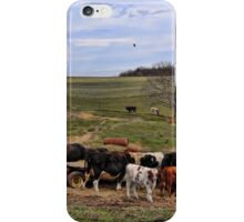 Hungry Cows iPhone Case/Skin