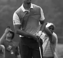 Tiger Woods by Kent Nickell