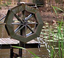 Water Wheel by Wayne  Nixon  (W E NIXON PHOTOGRAPHY)