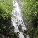 Mingo Falls by Bob Hardy