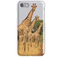 Giraffe Symmetry - African Wildlife Background iPhone Case/Skin