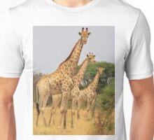 Giraffe Symmetry - African Wildlife Background Unisex T-Shirt
