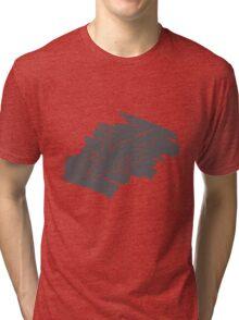 Rubbing Tri-blend T-Shirt
