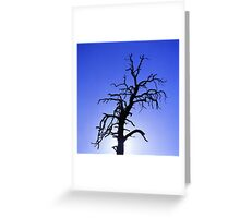 Crazy Tree Greeting Card