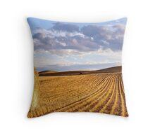 Bale & Field, Vinegar Hills Throw Pillow