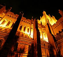 Catherdral at Night by Mark Snelson