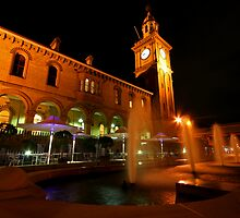 Customs House Newcastle by Mark Snelson