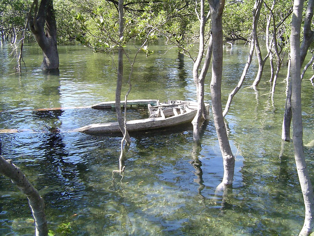Sunken Rowboat in Mangrove by Barry Ross