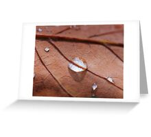 November Rain Greeting Card