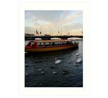 Swans on the Rhône Art Print
