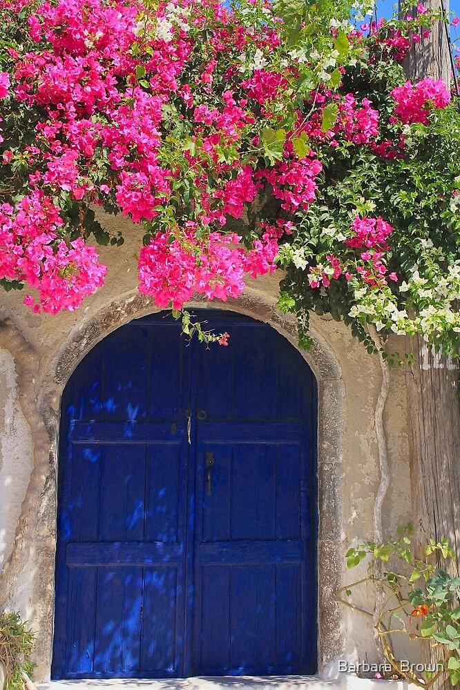 Blue Gate by Barbara  Brown
