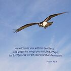 Under His Wings You Will Find Refuge by Kathy Weaver