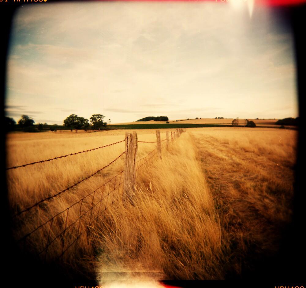 Land by Ben Swinnerton