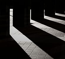 Lights and Shadows by Prescott Pym