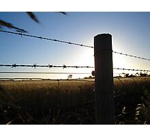 sunset and barbwire Photographic Print