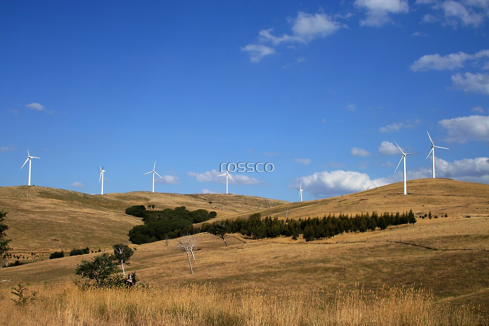 The Wind Farm by rossco