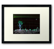 WDV - 367 - Point and Spot Framed Print