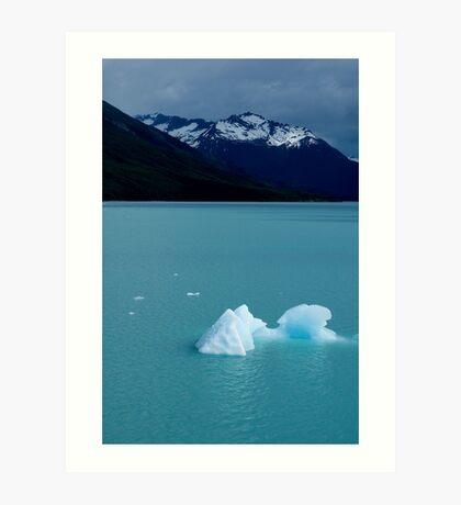 Patagonian icebergs Art Print